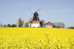 Imagen Sweden & Denmark Roundtrip
