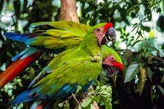 Imagen Visita al Zoo El Pantanal en Guayaquil