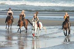 Nusa Dua Nusa Dua Peninsula Horse Ridding at Black Sand Beach-15 Minutes-Blangsinga Waterfall-Ubud Market 86511P173