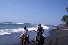 Nusa Dua Nusa Dua Peninsula Horse Ridding at Black Sand Beach 30 Minutes-Blangsinga Waterfall-ubud Palace 86511P174