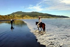 Nusa Dua Nusa Dua Peninsula Horse Riding 30 minutes at Black Sand Beach-Tegenungan Waterfall-Ubud Market 86511P178