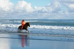 Nusa Dua Nusa Dua Peninsula Cosmo Bali Horse Riding 15 minute at Black Sand Beach -Ubud Market – ubud palace 86511P181