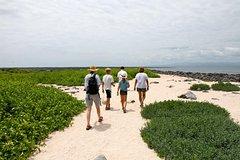 Imagen Excursión de día entero a la isla Seymour Norte