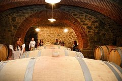 Verona Amarone Wine Tasting