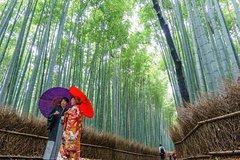 Kyoto Kyoto Prefecture Magical Arashiyama Tour with Bamboo Grove 30791P246