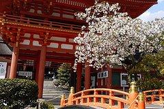 Ver la ciudad,Tours de un día completo,Especiales,Tour por Kioto