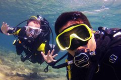 Playa del Ingles Gran Canaria Half-Day Scuba Diving Tour in Gran Canaria with Transfers 31445P2