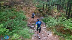 Trail Running in Madrid National Park