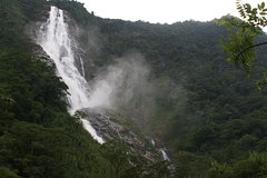 Imagen Roadtrip to the Waterfall