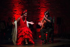 Imagen Jerez Flamenco Day Trip from Seville