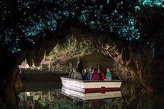 Imagen Caves and Kiwi - Waitomo Glowworm Caves, Ruakuri Caves & Otorohanga Kiwi House
