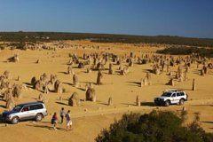 Imagen 1-Day Pinnacles and Yanchep Tour from Perth including Fish and Chips Lunch