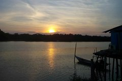 Imagen Spectacular Fireflies Watching by Traditional Row Boat - Monkey Feeding - Dinner