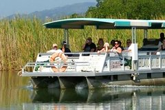 Imagen Private Tours from Montego Bay to Black River Safari and YS Falls