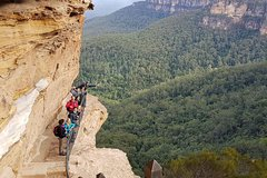 Imagen Hike into the wild Blue Mountains