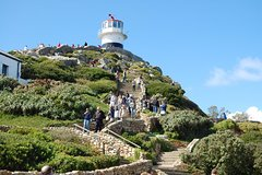 Cape Point Sightseeing Tour