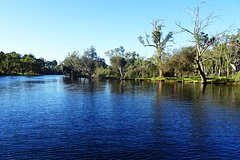 City tours,Theme tours,Historical & Cultural tours,Perth Tour,Swan River Cruise