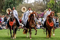 Imagen Full-Day Private Tour of Pachacamac Site and Peruvian Paso Horse Show from Lima