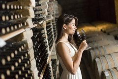 Half-Day Barolo Wine Tour in Piemonte with Gourmet Lunch and a Personal Dri
