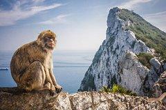Imagen Gibraltar and Vejer Day Trip from Seville