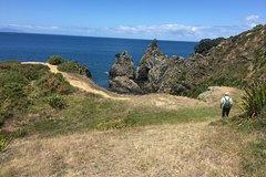 Imagen Stunning Auckland East Coast Walk & Wine Private Tour
