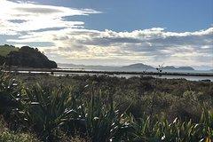 Imagen Beautiful Pohutukawa Coast - Half Day Private Tour