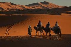 Activities,Adventure activities,Nature excursions,Excursión to the desert