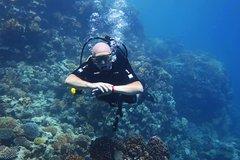Hurghada Red Sea and Sinai PADI Rescue Diver Course 108808P4