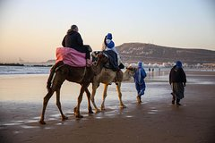 City tours,Activities,Other vehicle tours,Adventure activities,Nature excursions,Agadir Tour