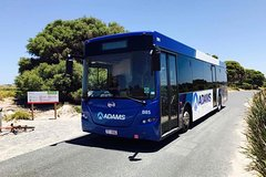 Imagen Rottnest Island Explorer Bus Tour from Hillarys Boat Harbour