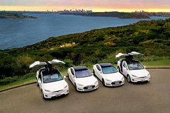 Full Day Private City & Northern Beaches - Luxury Tesla Tour Private Car Transfers