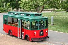 City tours,City tours,City tours,Bus tours,Other vehicle tours,