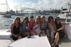 Full Day Private City Sights & Harbour Sailing - Luxury Tesla Tour Private Car Transfers