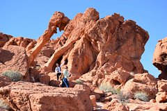 Valley of Fire Half-Day Tour