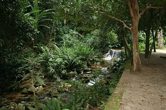 Imagen Botanical Garden and Tijuca Rainforest Jeep Tour