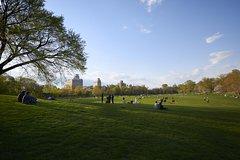Imagen Prospect Park Tour