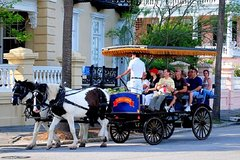 City tours,City tours,City tours,City tours,City tours,Excursions,Activities,Other vehicle tours,Theme tours,Theme tours,Historical & Cultural tours,Historical & Cultural tours,Full-day excursions,Water activities,