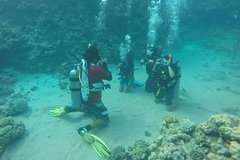 Sharm El Sheikh Red Sea and Sinai PADI Course: Padi Open Water Diver Course 18021P1