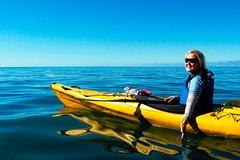 Imagen Full-Day Astrolabe Kayaking Eco-Tour