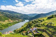 Salir de la ciudad,Excursions,Excursiones de un día,Full-day excursions,Excursión a Valle del Duero,Excursion to Douro Valley,Sólo tour