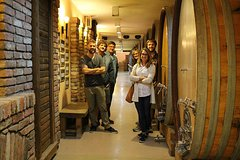 City tours,Gastronomy,Gastronomic tours,Oenological tours,Excursion to Sumadija,Belgrade Tour