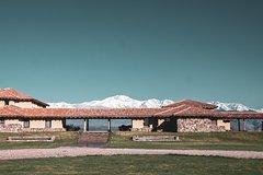 Imagen Recorrido vinícola en Luján con almuerzo desde Mendoza