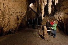 Imagen Tauranga Shore Excursion: Waitomo Caves and The Kiwi House