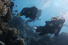 Hurghada Red Sea and Sinai Drift Diver Specialty Course 108808P20