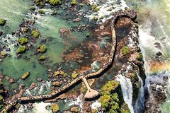 City tours,Tours with private guide,Specials,Excursion to Iguassu Falls,Bird Park