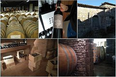 IRPINIA Wine Tour from Naples