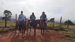 Activities,Adventure activities,Nature excursions,Medellín Tour,Excursion to Guatapé
