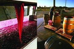 Imagen Winery Tour at Ash Ridge