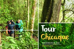 Imagen Full-Day Tour: Chicaque Park, Cloud Forest -Bird Watching-