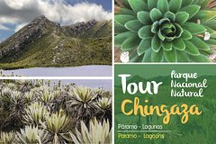 Imagen Half Day Hiking Eco-Tour: Chingaza Paramo + Transport & Lunch